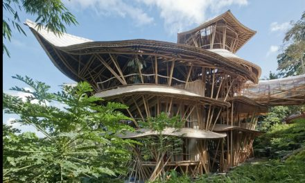 Magical Bamboo House