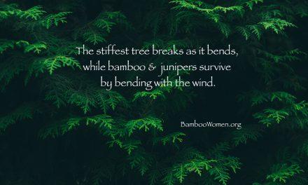 Bamboo Women Leaders Bend Instead of Breaking